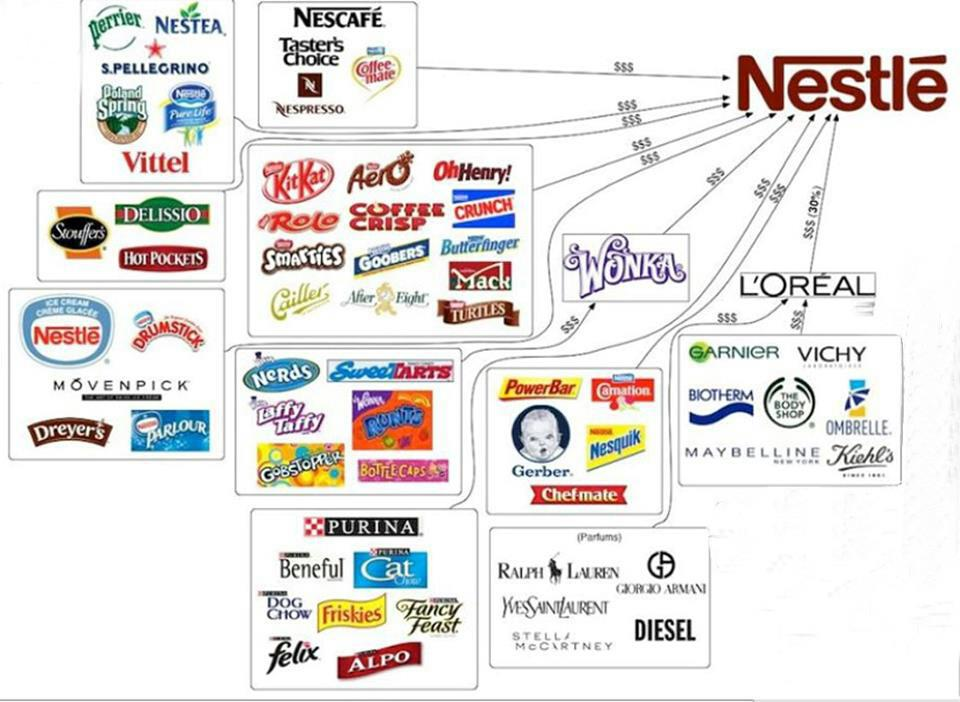 nestle transnational strategy