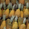 pineapples best